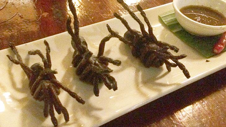 【カンボジア】昆虫食!プノンペンでタランチュラを食べる!NGOが運営するクメール料理レストラン「ロムデン Romdeng」